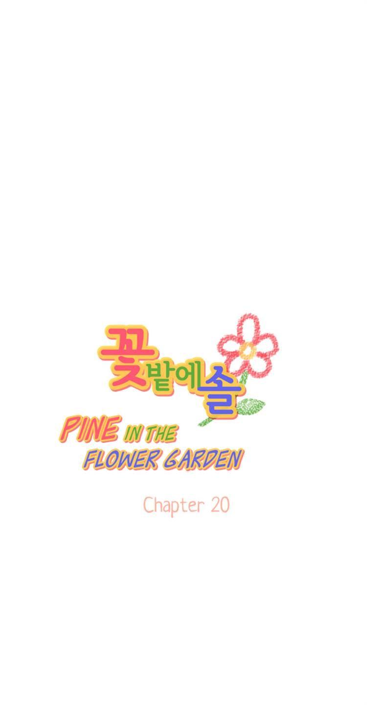 Pine in the Flower Garden 20 Page 1