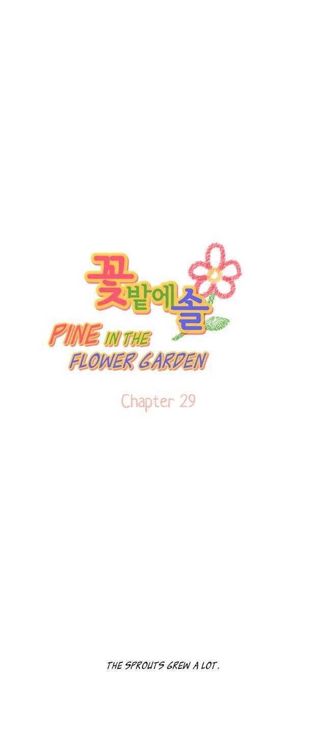 Pine in the Flower Garden 29 Page 2