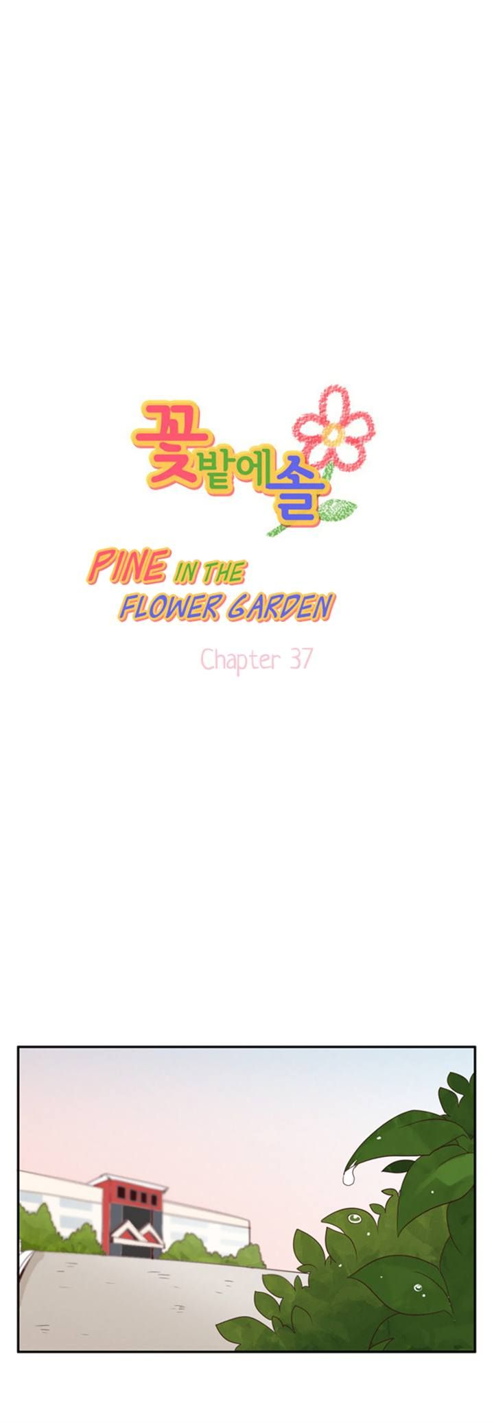 Pine in the Flower Garden 37 Page 1