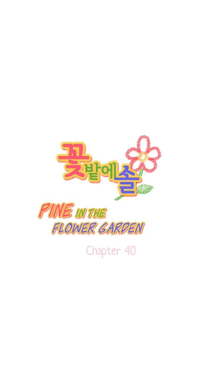 Pine in the Flower Garden 40 Page 2