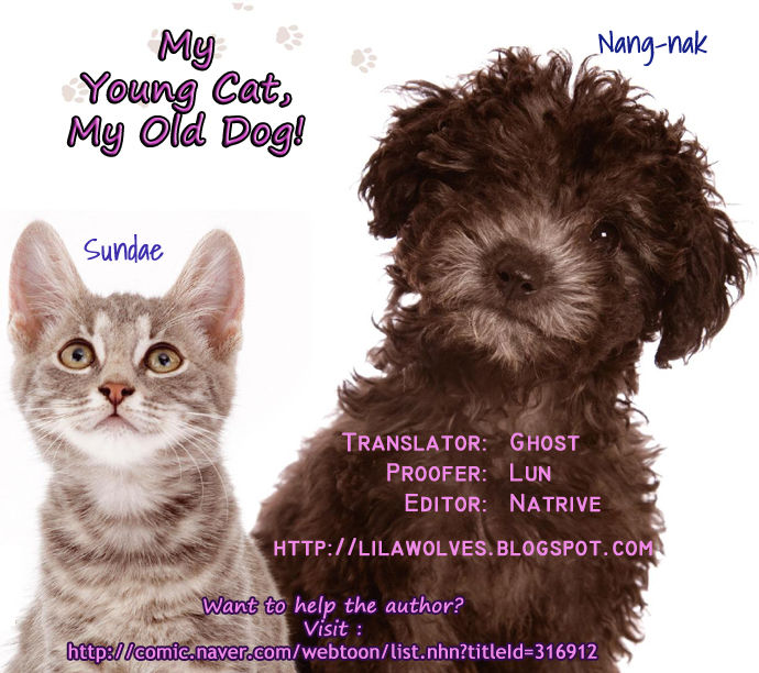My Young Cat and My Old Dog 18 Page 3