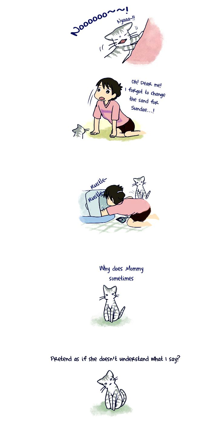 My Young Cat and My Old Dog 54 Page 3