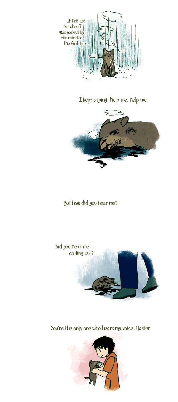 My Young Cat and My Old Dog 68 Page 2