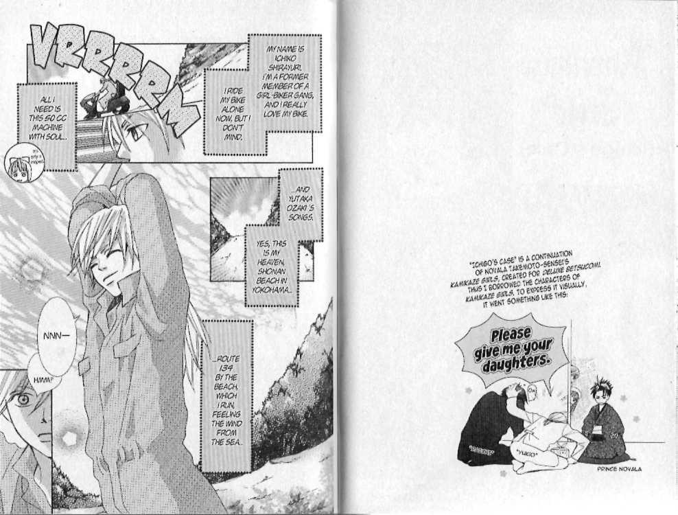 Kamikaze Girls 3 Page 2