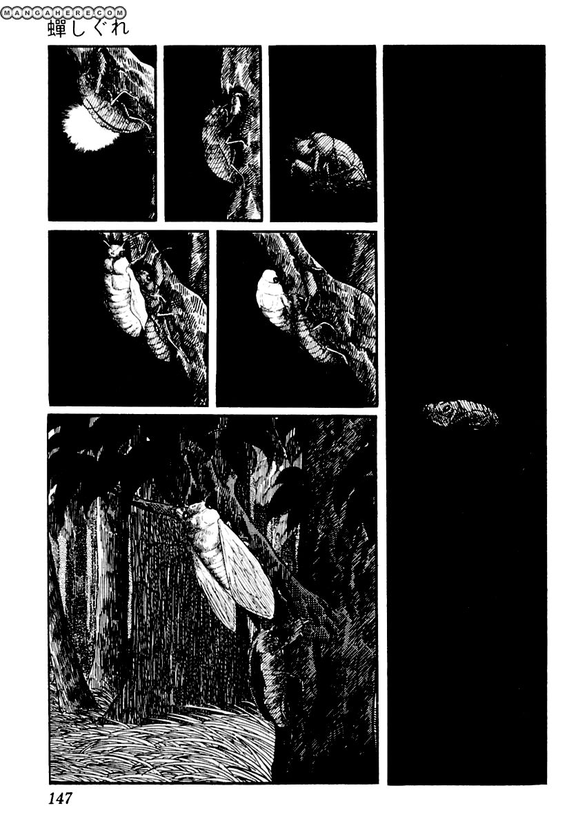 Sabu to Ichi Torimonohikae 20 Page 3