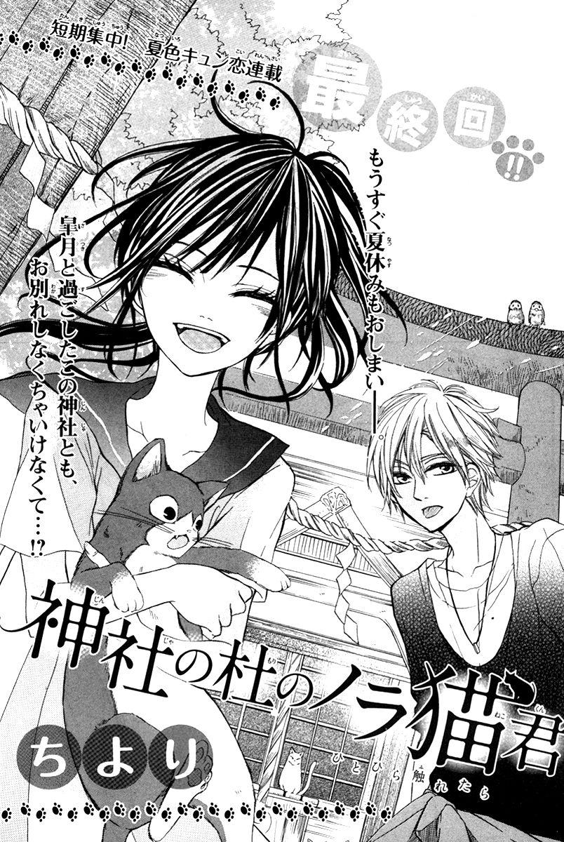 Jinja no Mori no Nora Neko-kun 3 Page 2