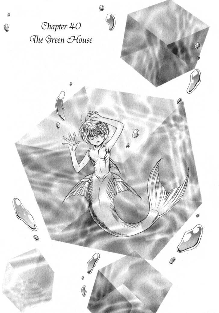 +Anima 40 Page 2