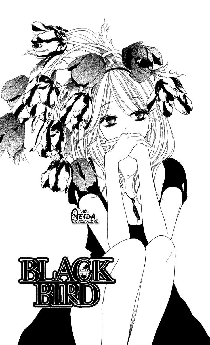 Black Bird 43 Page 2