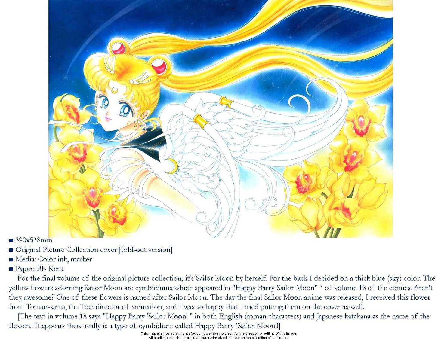 Sailor Moon 5 Page 3