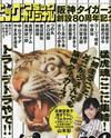 Hanshin Tigers Sousetsu 80 Shuunen Kinen Zoukan