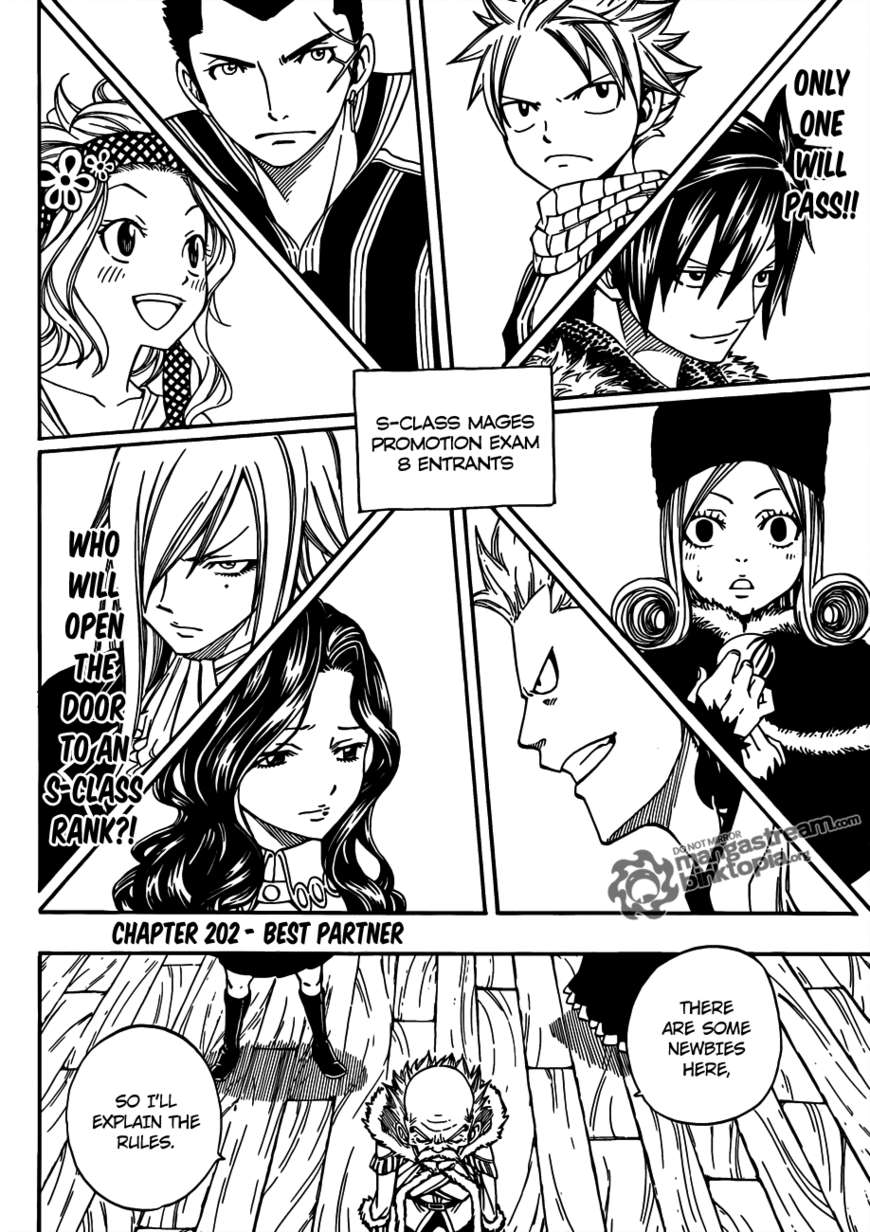 Fairy Tail 202 Page 3
