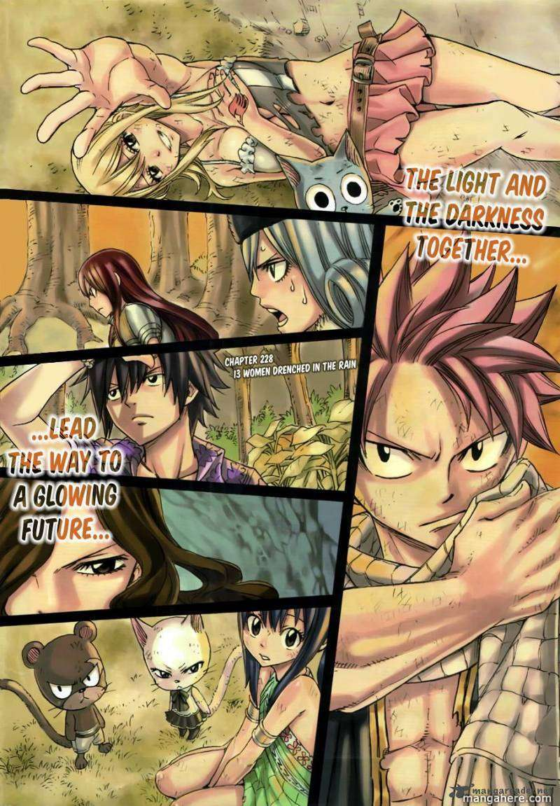 Fairy Tail 228 Page 3