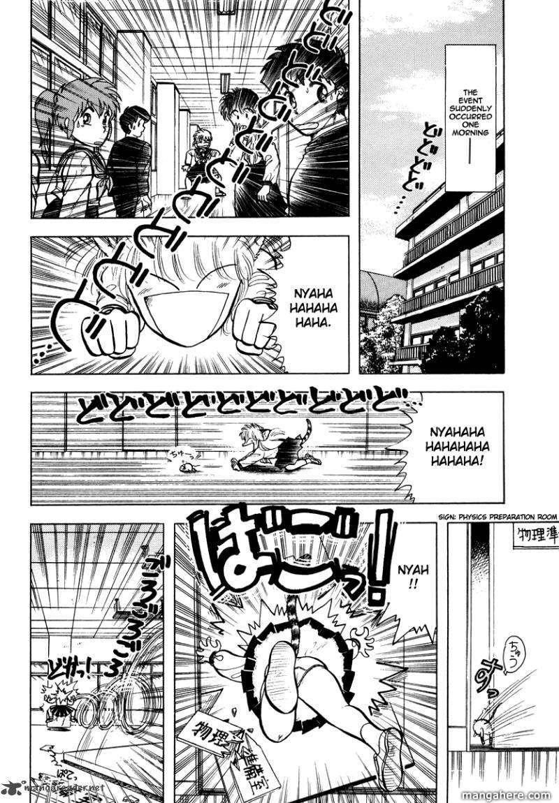 Neko de Gomen! 14 Page 3