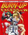 Burn-Up Excess & W