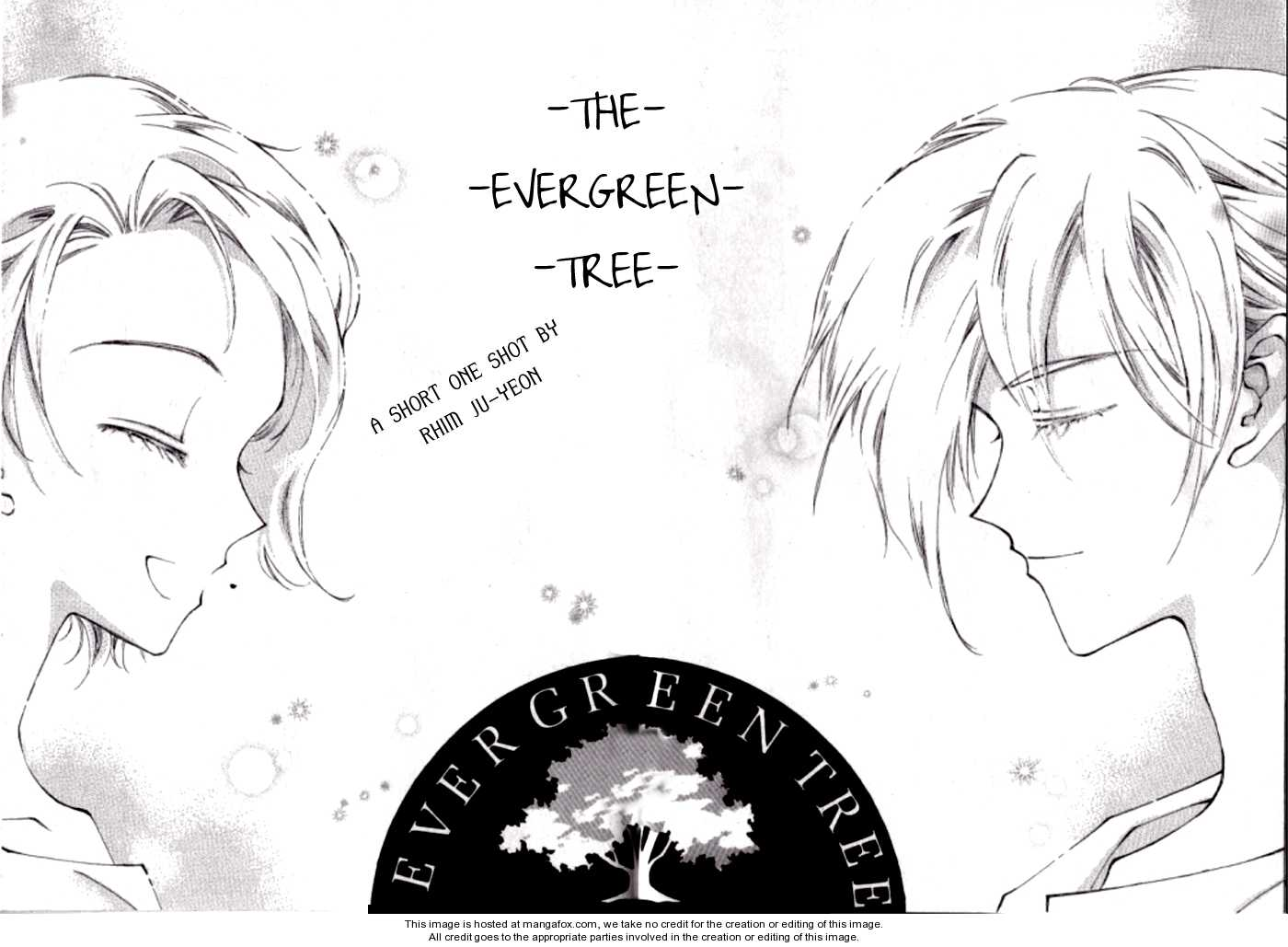 The Evergreen Tree 0 Page 2