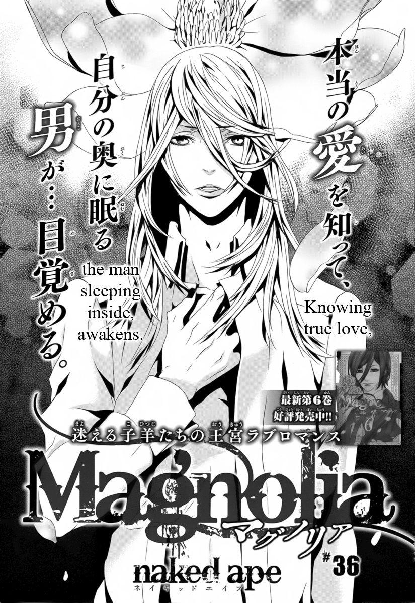 Magnolia 36 Page 3